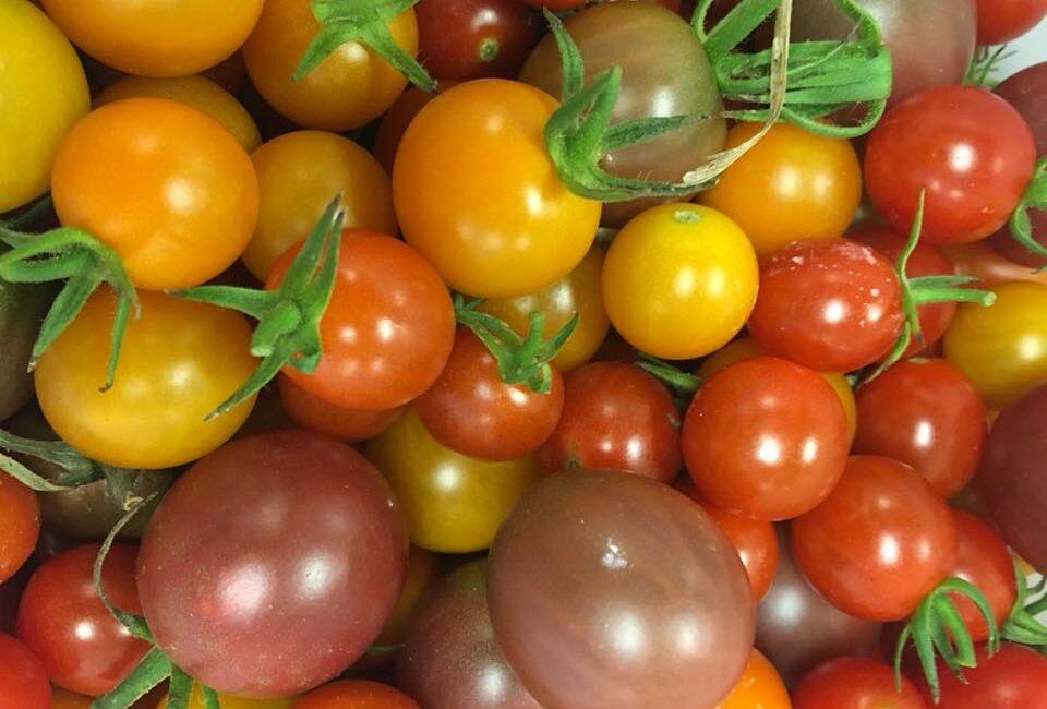 Fresh colorful veggies