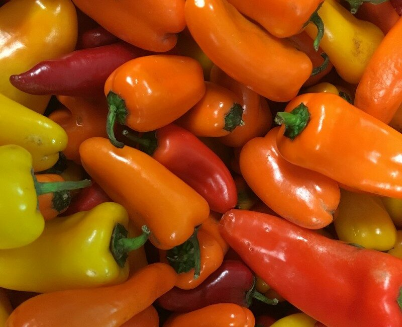 Orange red and yellow peppers