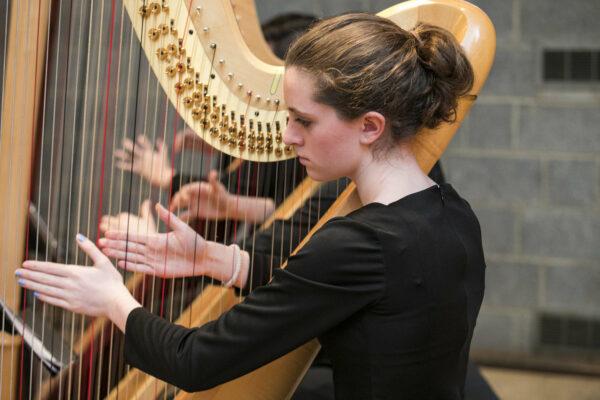 Music Feeds RVA harp